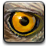 hawk's_eye